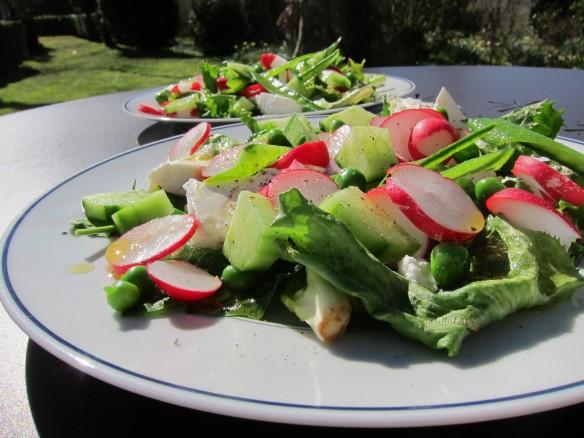 Radish, Pea, Cucumber and Herb Salad with Mozzarella