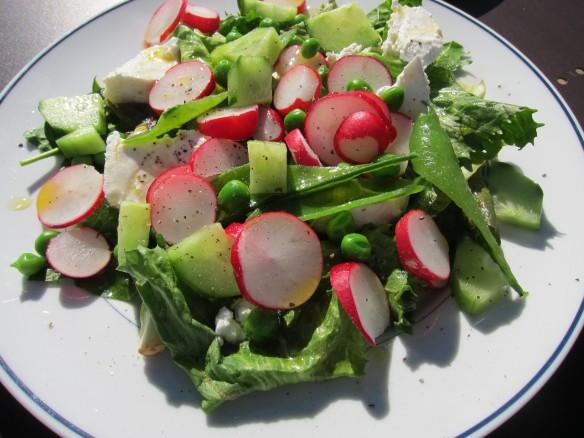 Salade de Radis, Petits Pois, Concombre et Mozzarella